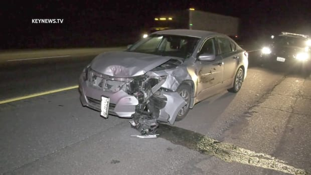 Vehicle Struck and Killed Bear