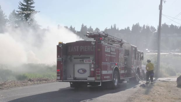Milton Brush Fire Contained Before it Reached Neighborhood