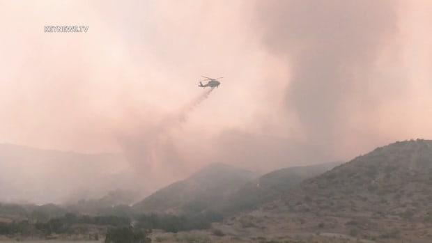 Tumbleweed Fire in Gorman