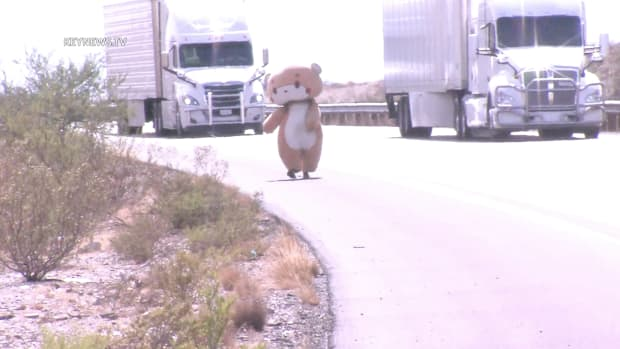 Jesse in Bear Costume Walking to NY from CA