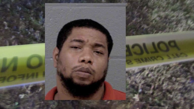 ASIAN MAN AND DOG KILLED BY SPEEDING VEHICLE, SUSPECT ARRESTED