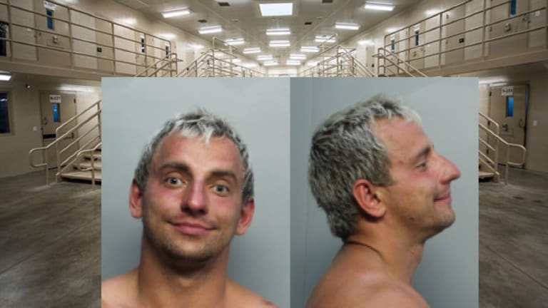 MILLIONAIRE YOUTUBE STAR VITALY ARRESTED ACCUSED OF BEATING FEMALE JOGGER