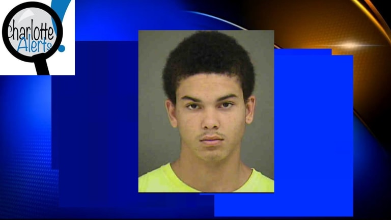 TEENAGER ARRESTED FOR SEXUALLY ASSAULTING TWINS HE WAS BABYSITTING, ALLEGEDLY