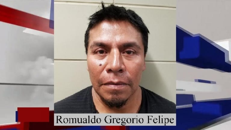 SEX OFFENDER AND ILLEGAL IMMIGRANT ARRESTED CROSSING INTO UNITED STATES