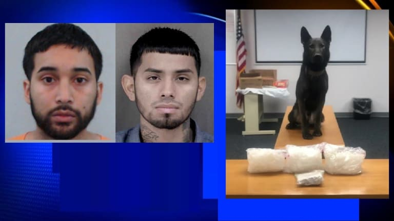 $120,000 DRUG BUST ON FLORIDA HIGHWAY, SUSPECTS CAUGHT BY DRUG SNIFFING DOG