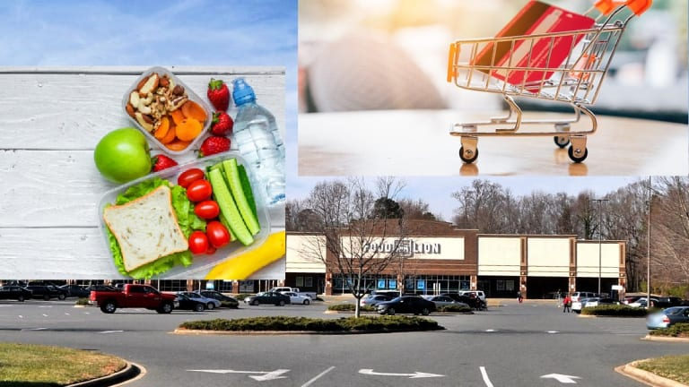 NC FOOD STAMP RECIPIENTS CAN USE EBT CARDS ONLINE AT FOOD LION VIA INSTACART