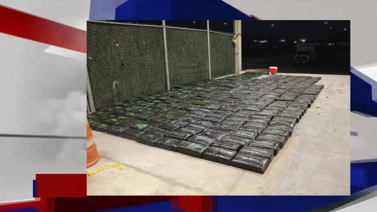 $632,000 WORTH OF MARIJUANA SEIZED IN HIDDEN BROCCOLI SHIPMENT