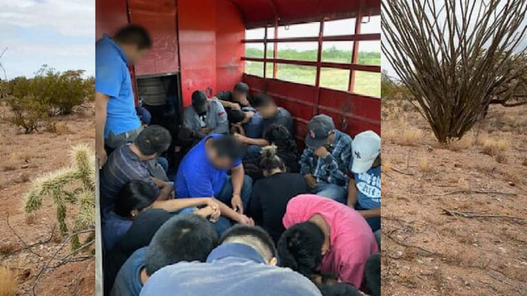 42 ILLEGAL IMMIGRANTS FOUND HIDING IN HORSE TRAILER