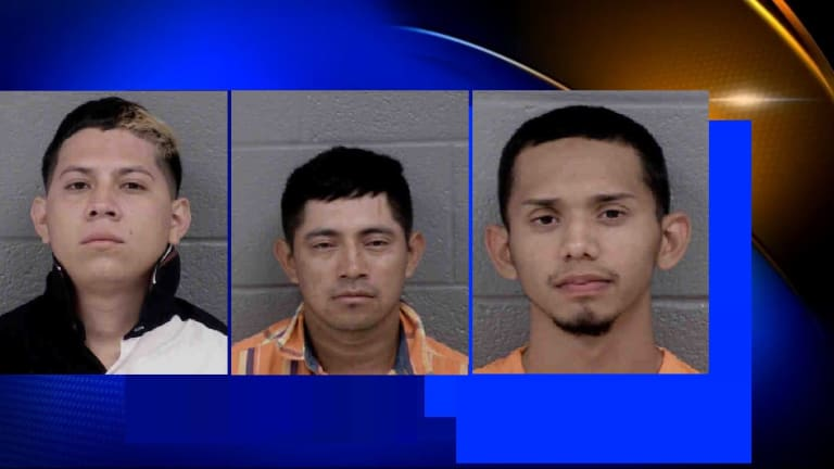 SEVERAL ARRESTED IN ICE RAID DURING RECENT ROUND UP