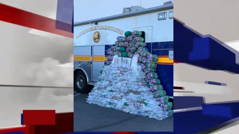 406 KILOGRAMS OF COCAINE SEIZED IN DRUG BUST ALONG WITH METH AND HEROIN