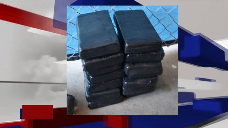 $618K IN DRUGS SEIZED AT UNITED STATES PORTS OF ENTRIES