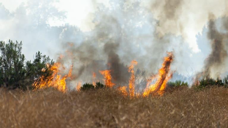 Sepulveda Basin Brush Fire Burns 70 Acres