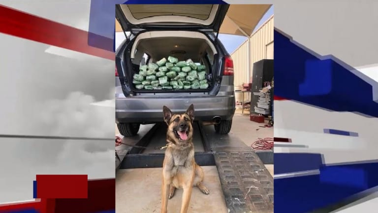 WOMAN HAD HER TRUNK LOADED WITH METHAMPHETAMINE, DOG SNIFFS IT OUT