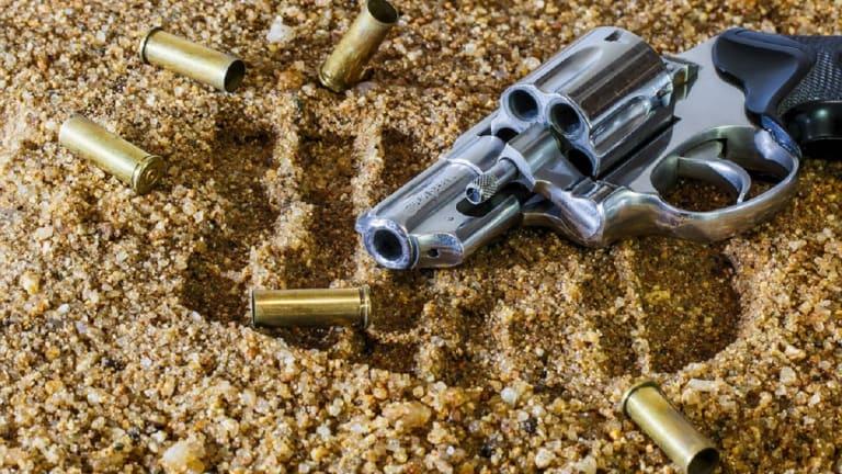 12-YEAR-OLD KID SHOT AND KILLED AT PICNIC