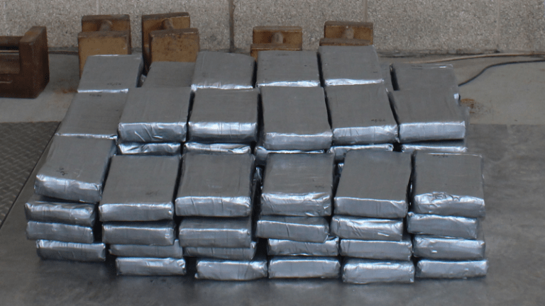 $1.5 MILLION IN COCAINE SEIZED IN DISGUISED COMMERCIAL SHIPMENT