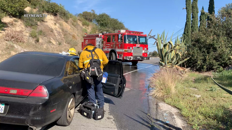 Hollywood Hills Vehicle Collision into Power Pole Sparks Brush Fire, Power Loss