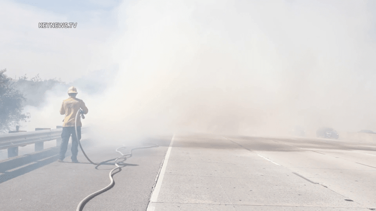 Small Brush Fire Erupts Near the 14 Freeway