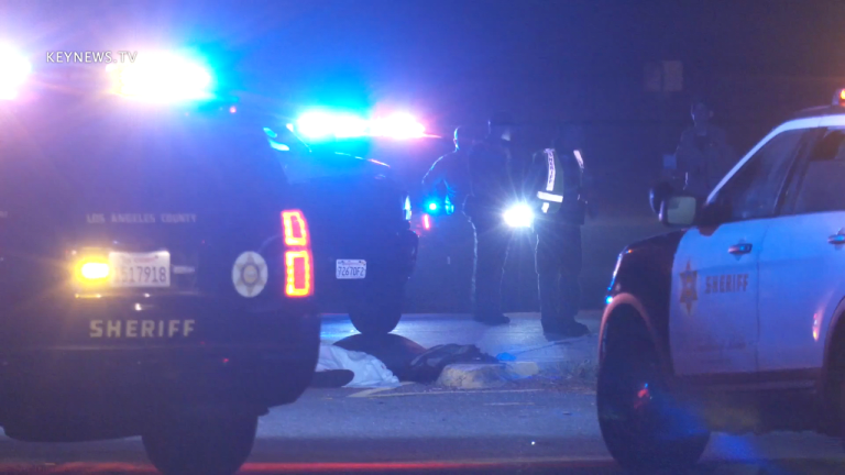 2 Pedestrians Struck and Killed by Vehicles on Same Stretch of PCH