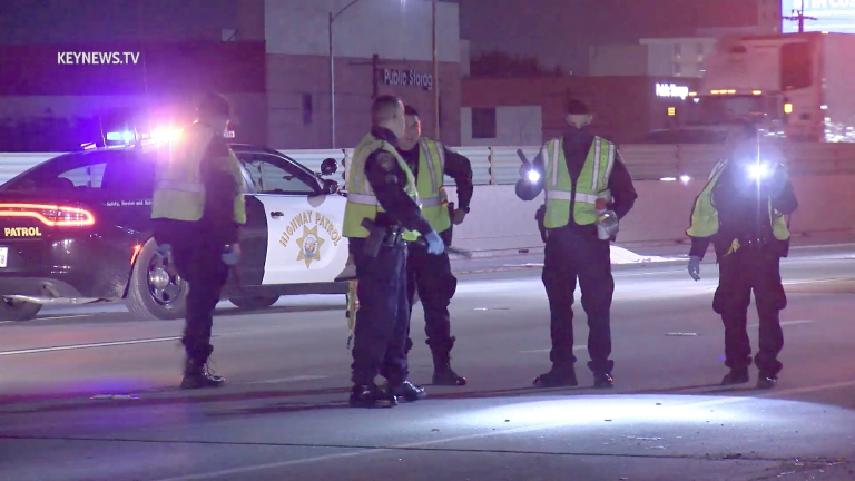 Downtown Los Angeles 10 Freeway Fatality