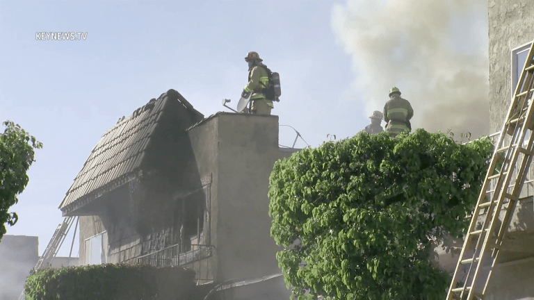 Firefighters Battled Condo and Adjacent Apartment Building Fires
