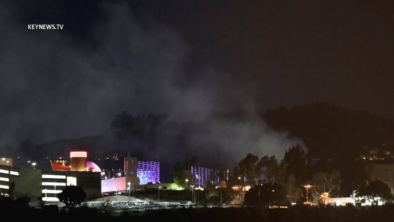 Universal Studios Vegetation Fire