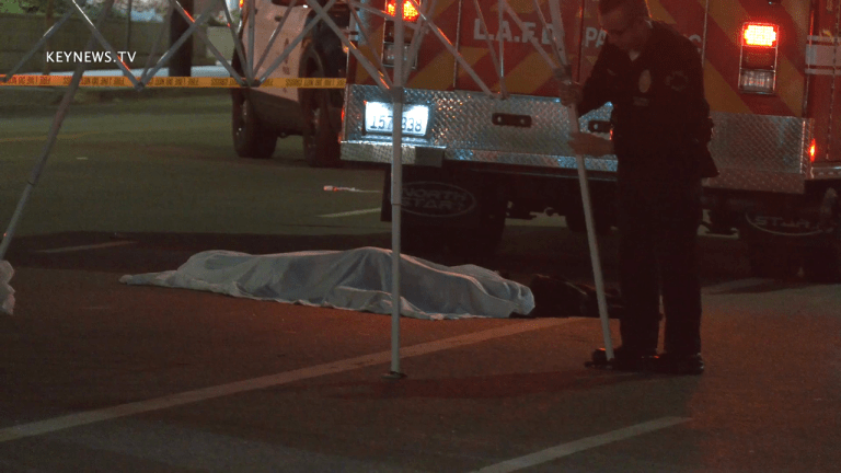 North Hollywood Auto vs Pedestrian Fatal Hit-and-Run