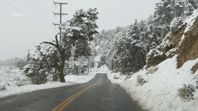 Fresh Snowfall in Frazier Park