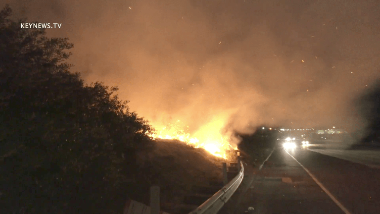 Brush Fire Contained Alongside 118 Freeway in Pacoima