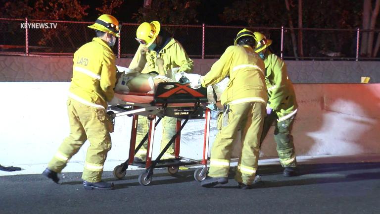Cypress Park Man Struck on 110 Freeway