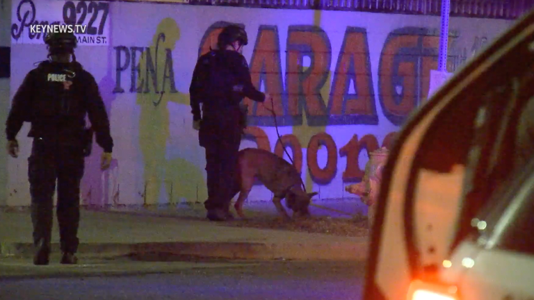 Broadway-Manchester K-9 Search for Suspect