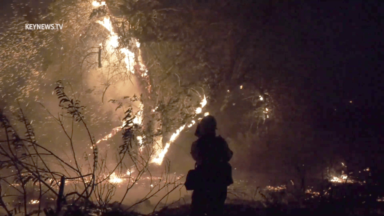 Irwindale Wind-Driven Brush Fire