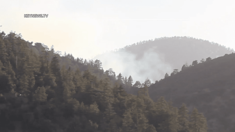 Springs Fire Scorched Acres in Angeles National Forest