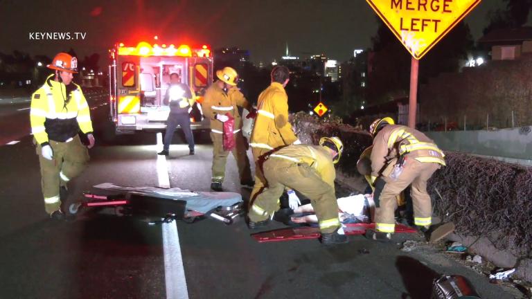 Pedestrian Struck by Semi-Truck on 101 Freeway