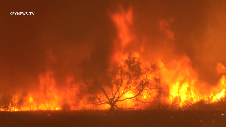 Firefighters Contain Wind Driven Erbes Fire in Ventura County
