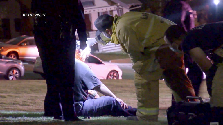 Echo Park Male Victim was Struck in the Head, Then by Vehicle (GRAPHIC)