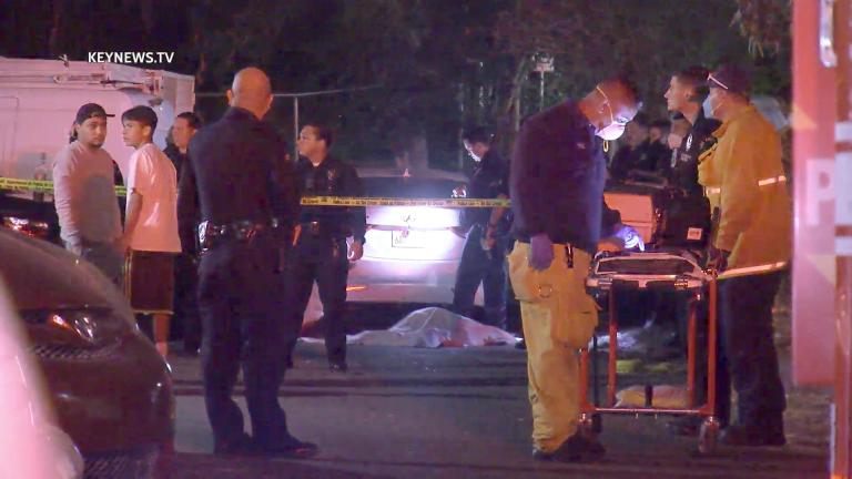Highland Park Double Homicide (GRAPHIC)