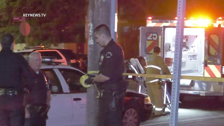 Multiple People Stabbed at Vermont-Slauson Party (GRAPHIC)