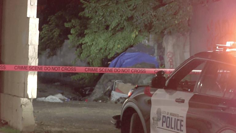 Modesto Hit-and-Run Homicide