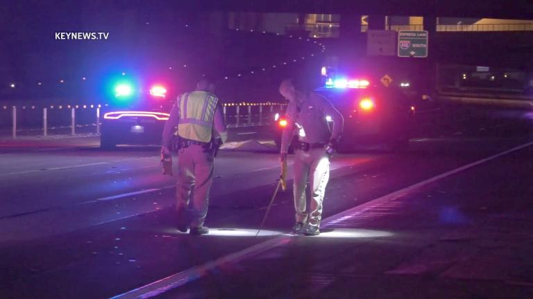 Pedestrian Struck, Killed Crossing 110 Freeway