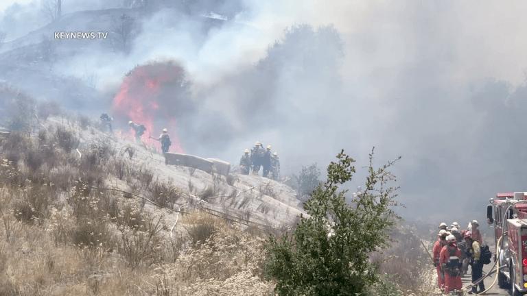 Firefighters Contain Santa Clarita Brush Fire