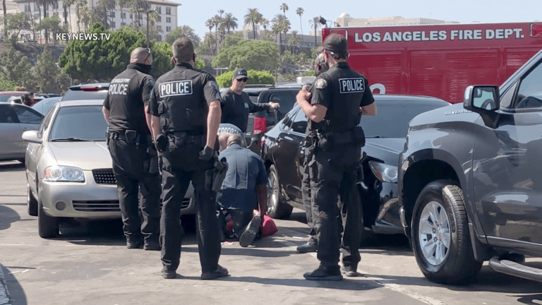 Man Hospitalized After Fight in San Pedro Fish Market Parking Lot