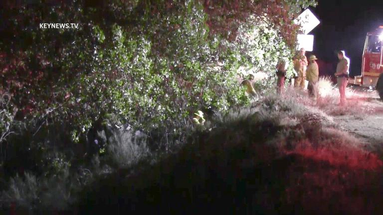 Fatal Dune Buggy Crash in Acton