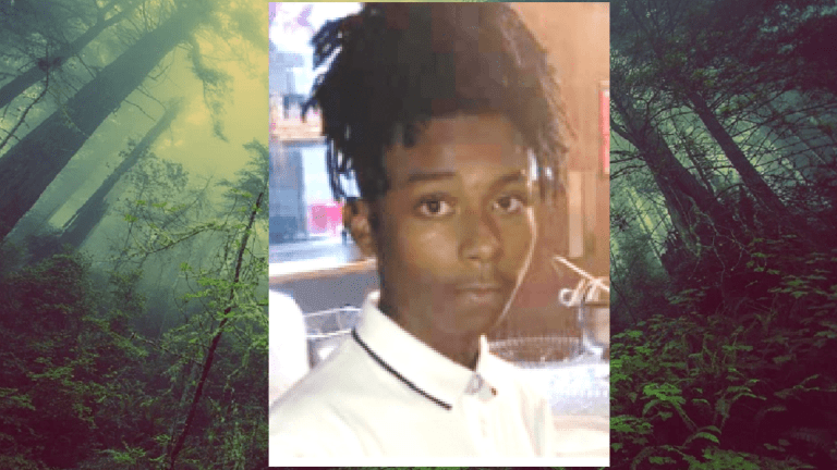 TEENAGE BOY FOUND MURDERED IN PARK WOODS, KILLERS BEING SOUGHT