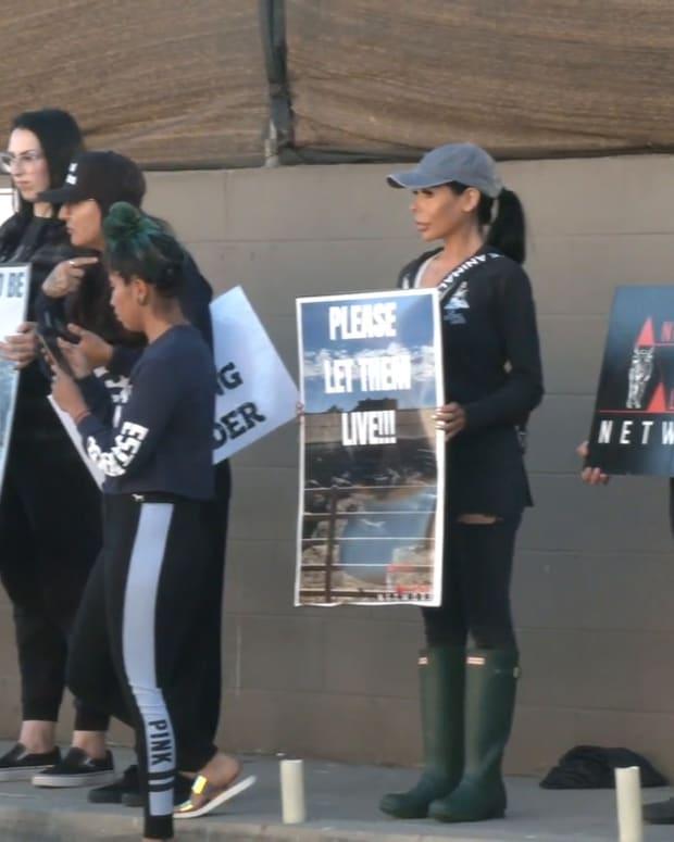 Pico Rivera Slaughterhouse Protest
